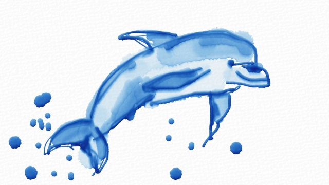 Common Dolphin in Auryn Ink