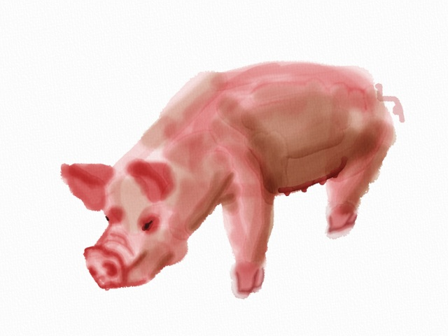 Ugly Pig in Auryn Ink