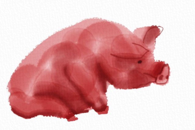 Oblivious Pig in Auryn Ink