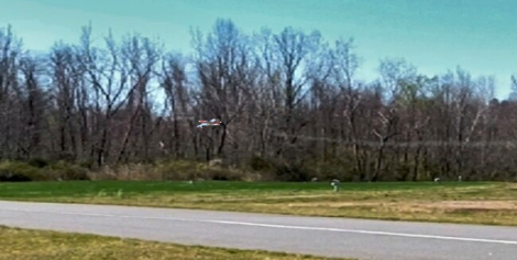 Flying above grass into trees