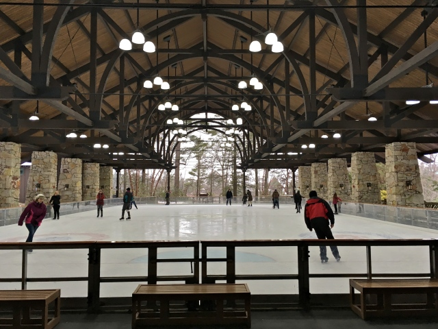 The ice skating pavilion