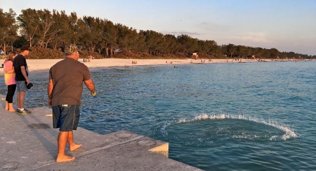 Cortez Beach Cast Net Fishing Sequence 10 of 11