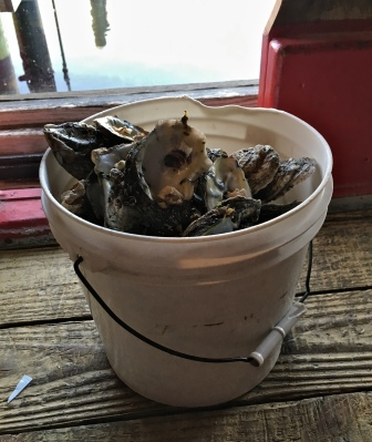 Phillippi Creek Oyster Bar Creek Combo Pot Steamed Oysters