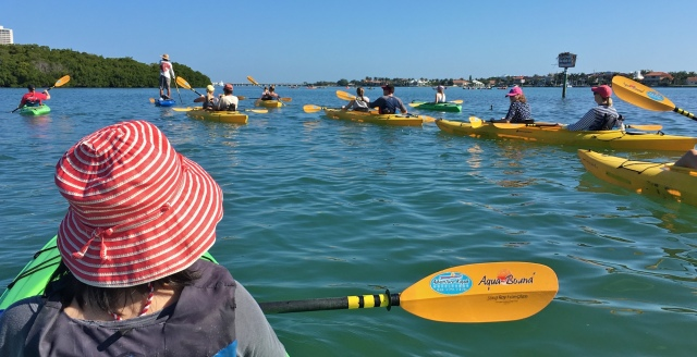 Adventure Kayak Guided Tour the Fleet