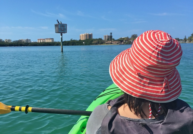Adventure Kayak Guided Tour Cormorant on a Manatee Speed Limit Post