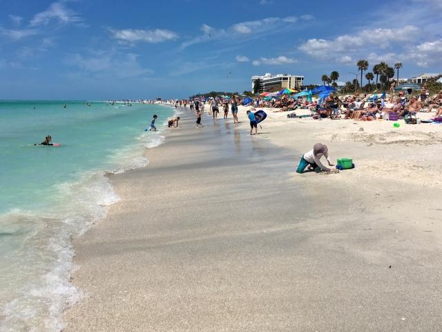 Lido Key Beach
