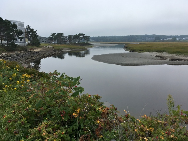 Ogunquit River at mid tide