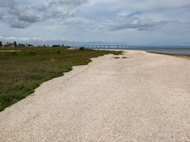 Shells Dirt Jumps at the Beach Park, Foster City