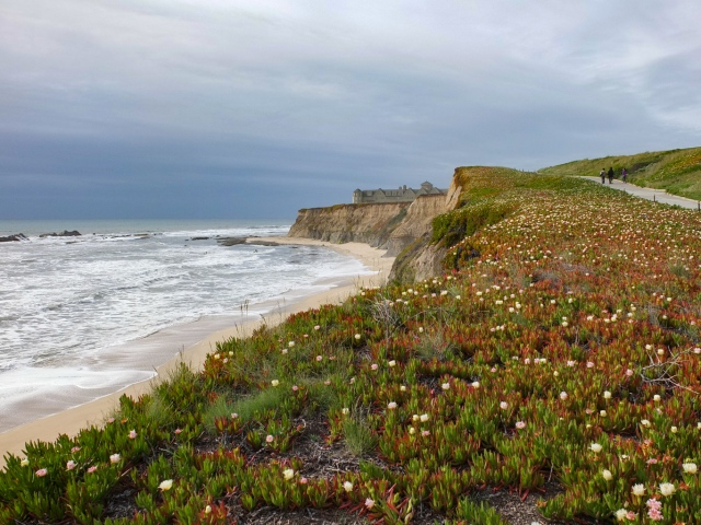 Beach and Cliff at Ritz-Carlton, Half Moon Bay