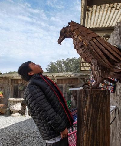 Bald Eagle Metal Sculpture at Sun Studios, Half Moon Bay
