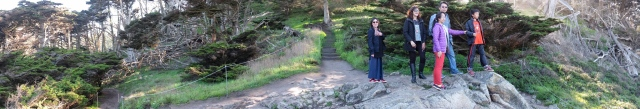Panorama during a walk in the woods at Point Lobos, Monterey Bay