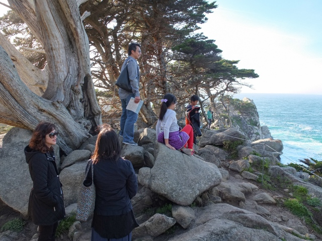 A view of the Ocean and rock formations at Point Lobos, Monterey Bay