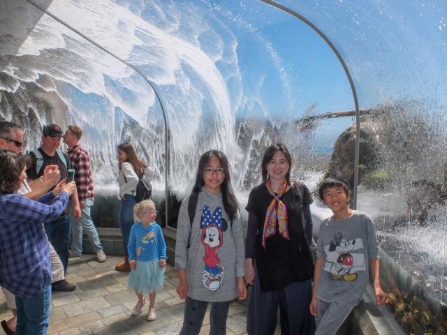 Wave crash tunnel at Monterey Bay Aquarium